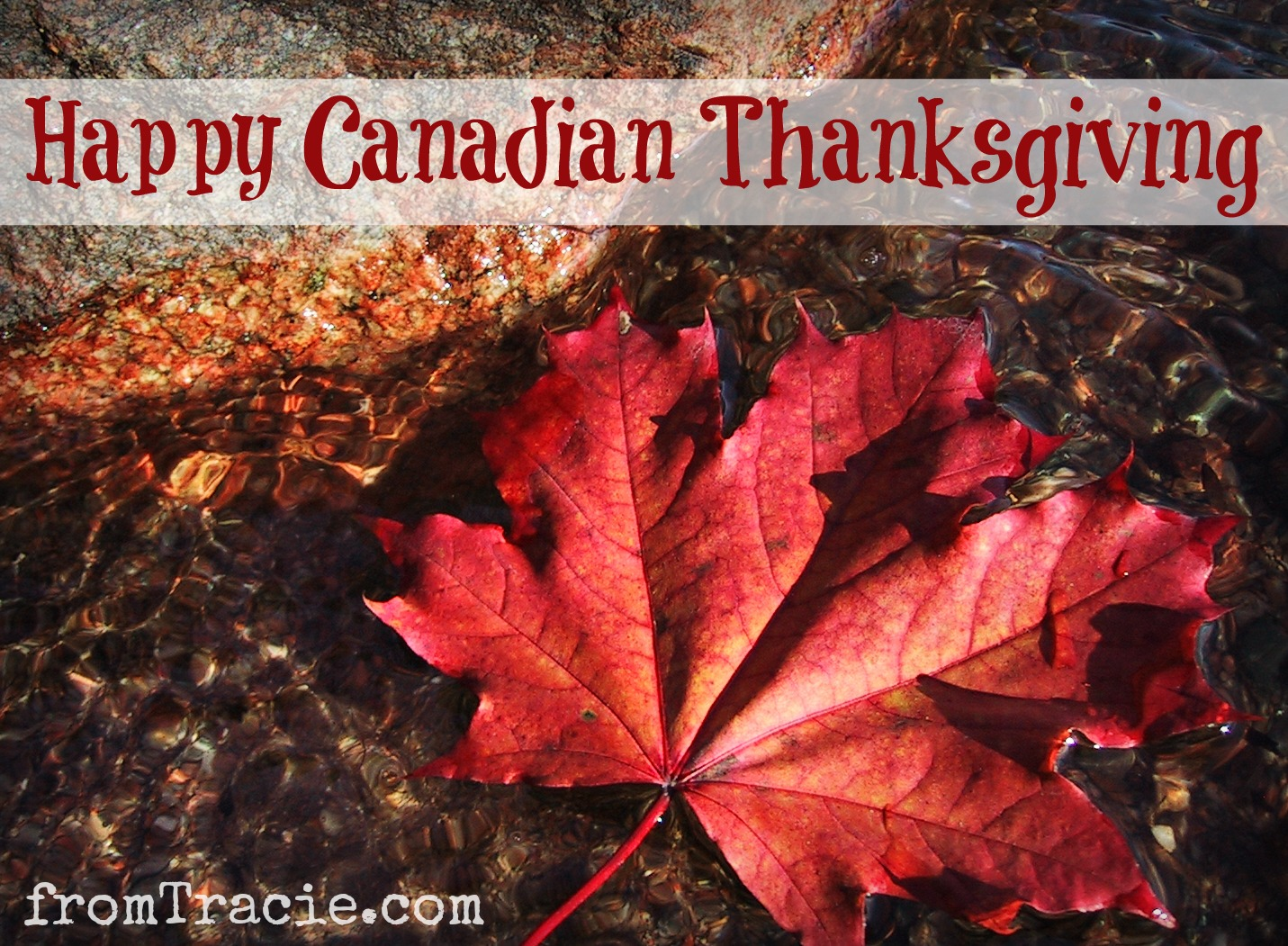 When is canadian thanksgiving 2013